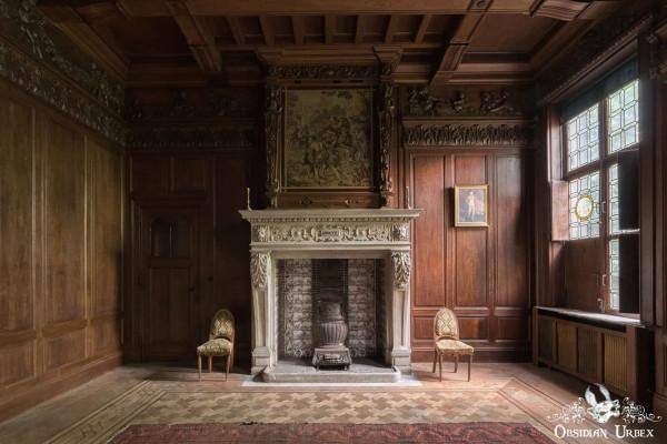 Town Mansion Belgium Fireplace