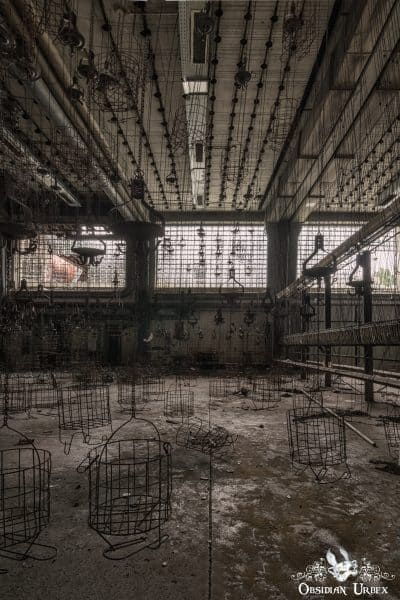 Zeche P Germany Abandoned Coal Mine Clothes Cages and Chains Room Portrait