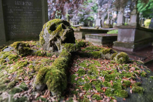 Cemetery Of The Skull Belgium Featured Image
